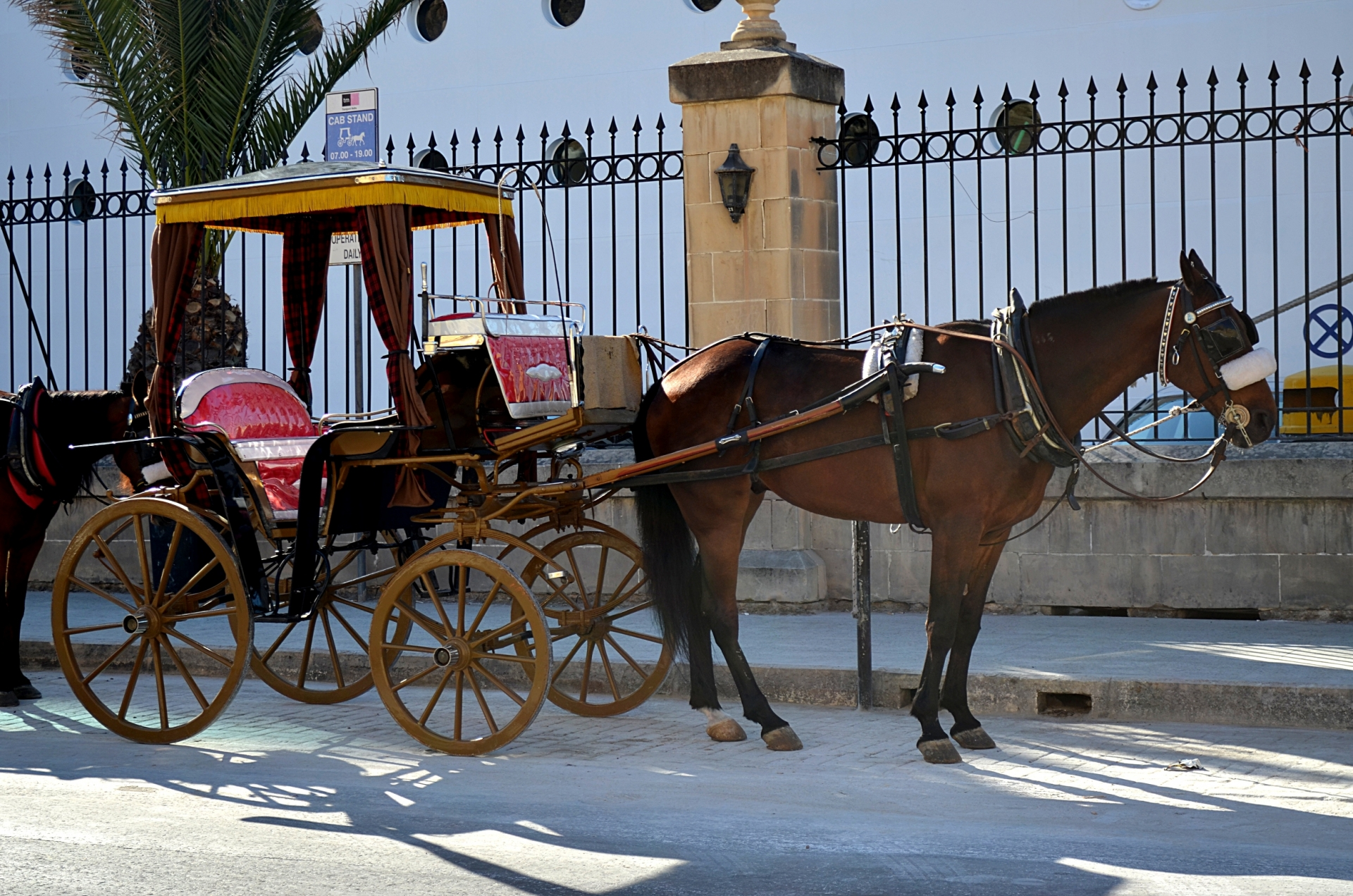 Land-Hire-and-reward-professional-drivers-horse-drawn-cabs