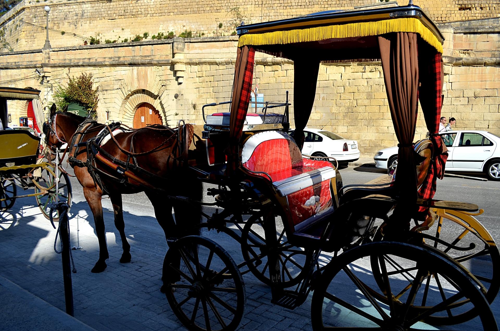 land-other-public-transport-horse-drawn-cabs-karozzini